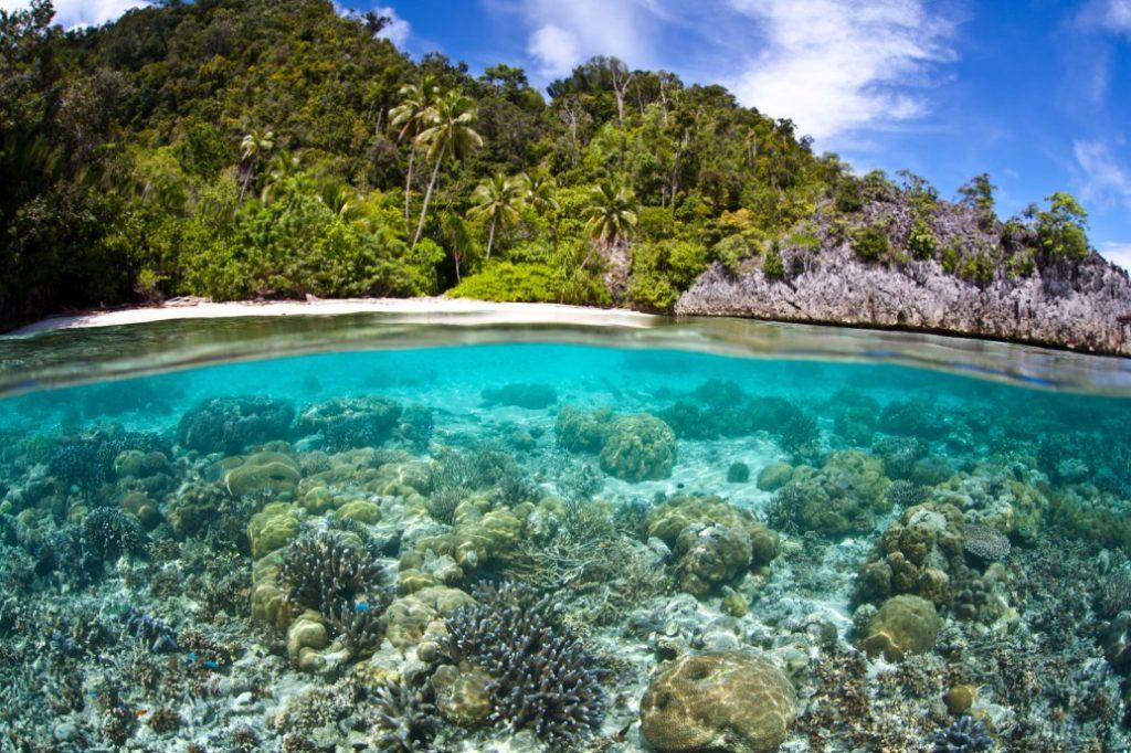 Papua onder de zeespiegel