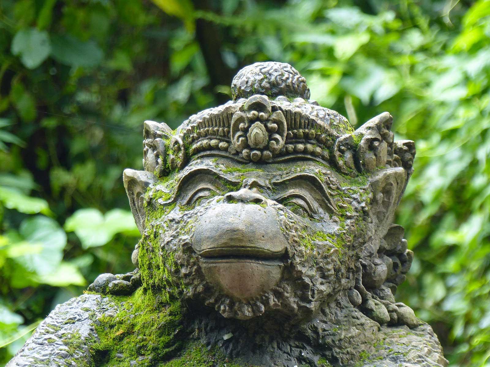 Rondreis Bali Ubud 5
