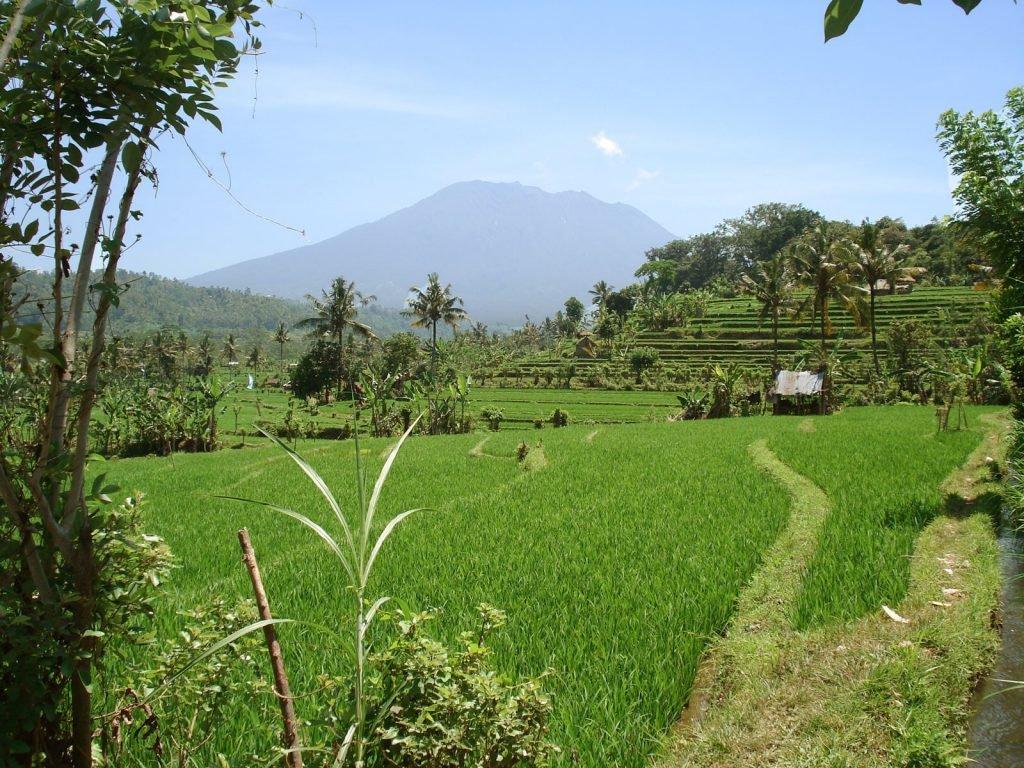 Sidemen (Bali) | Rama Tours