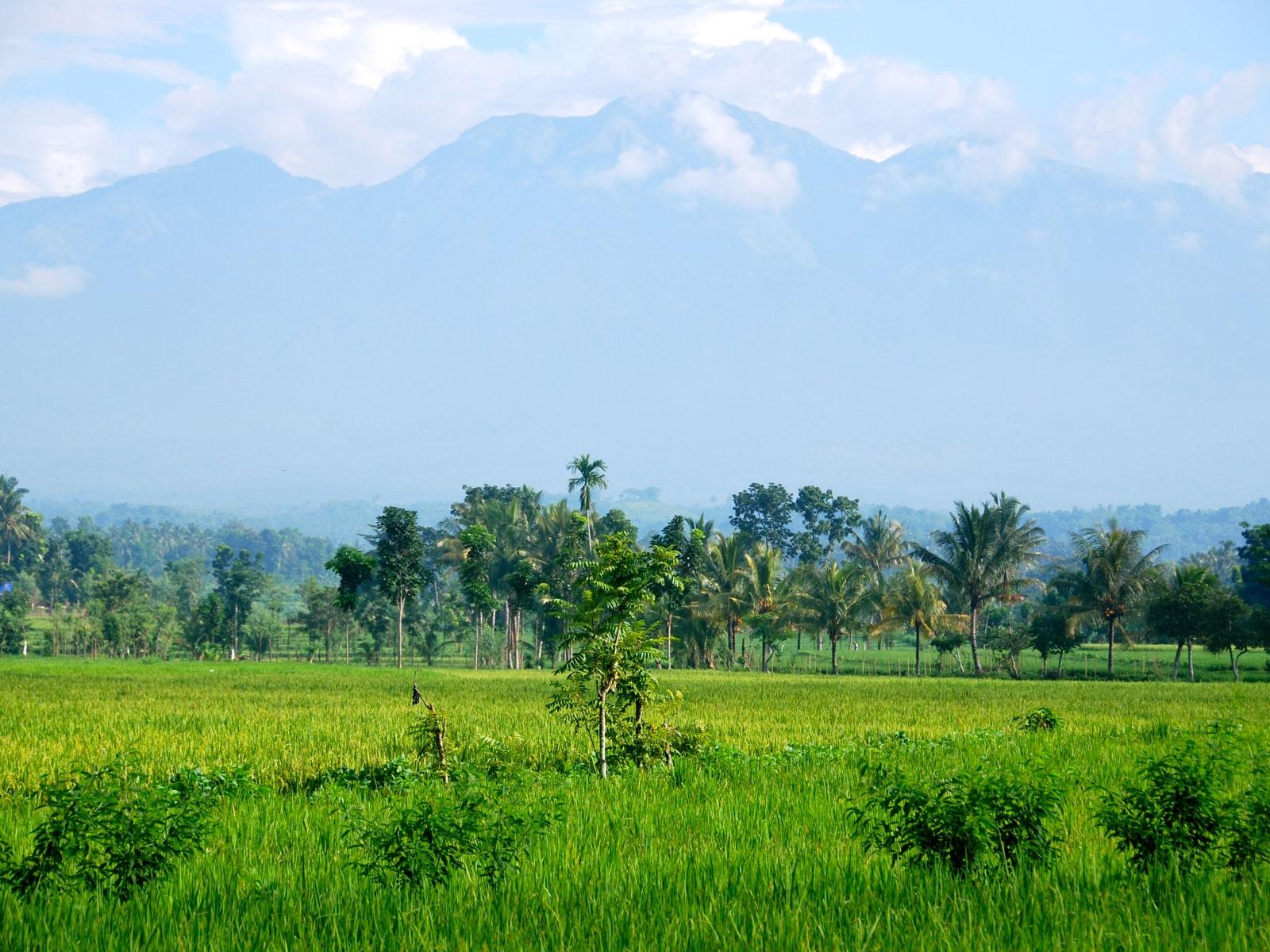 rondreis lombok tetebatu hoogtepunt 4