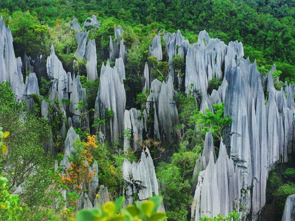 Gunung Mulu National Park | Rama Tours