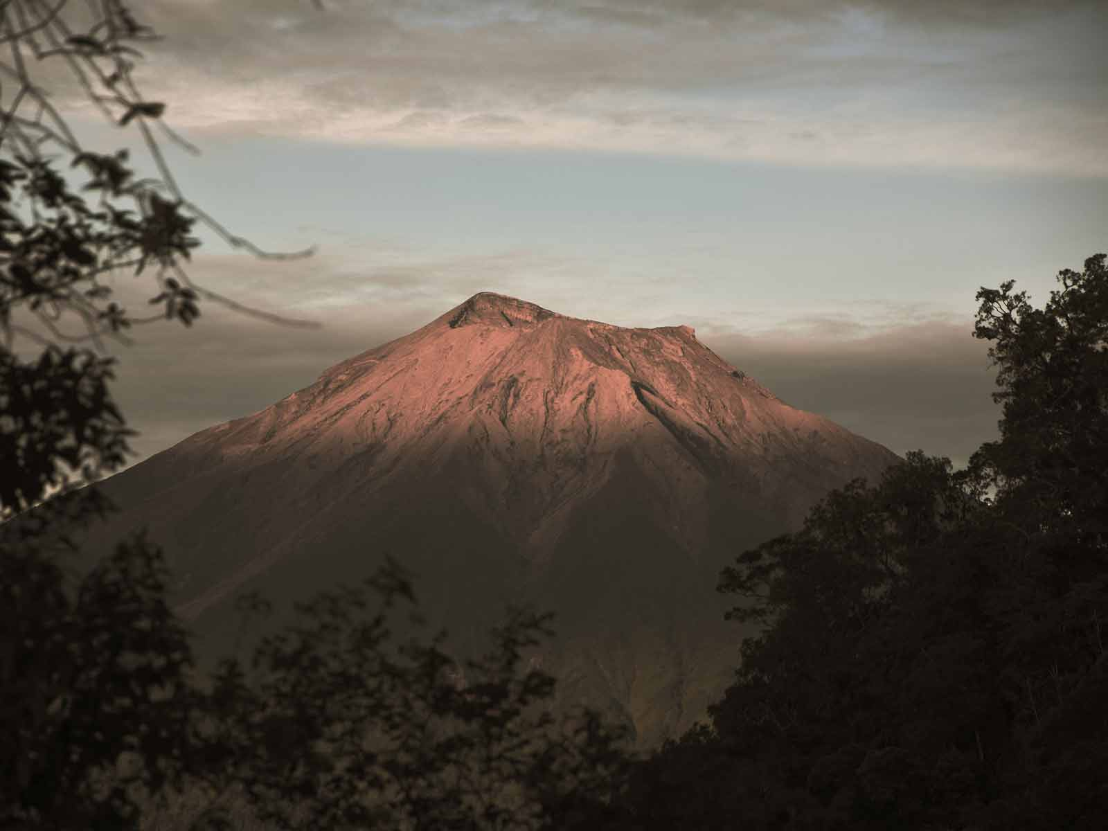 rondreis sumatra kerinci seblat national park hoogtepunt 1