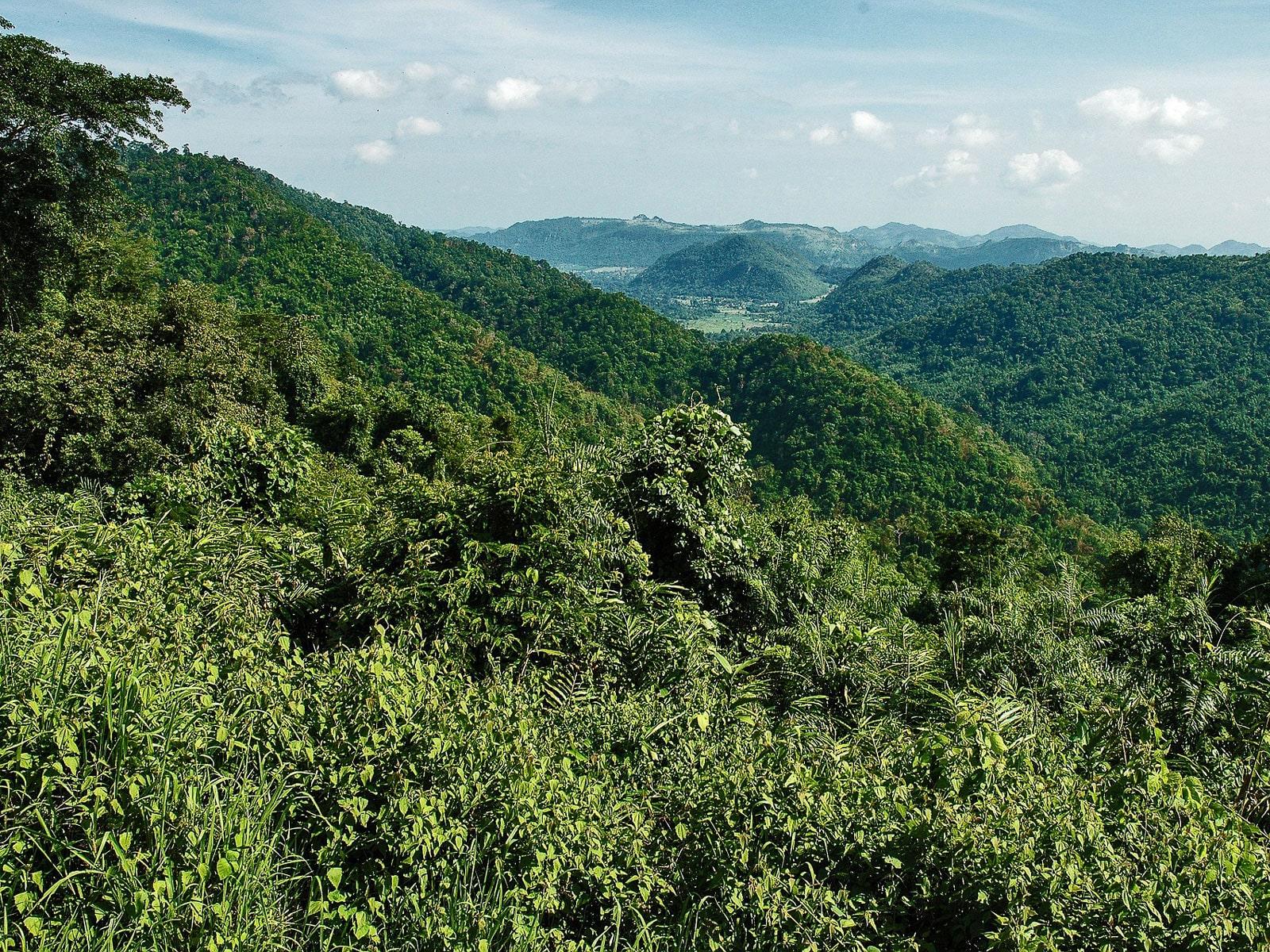 rondreis thailand khao yai national park hoogtepunt 2