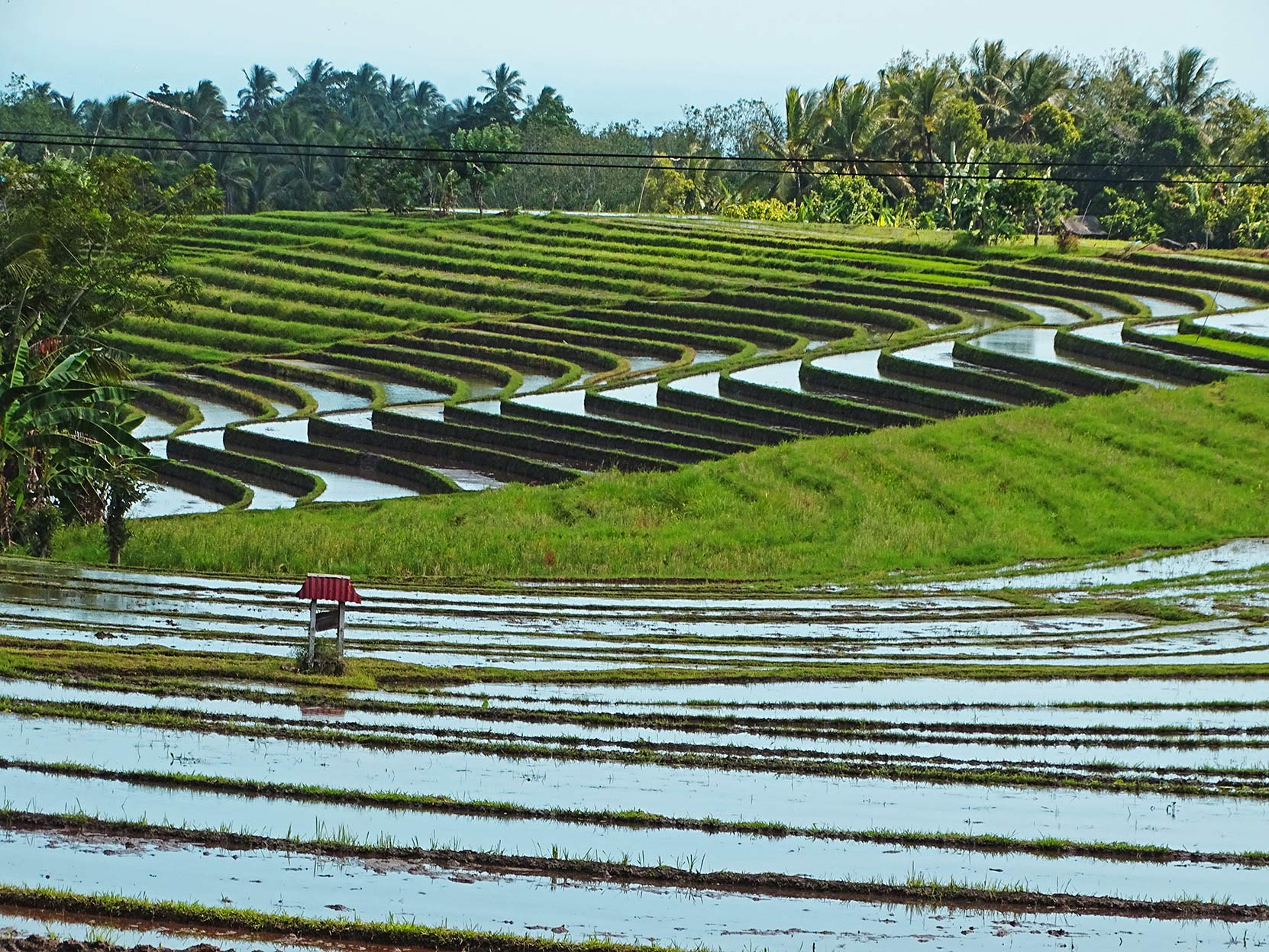 BALI Rondreis Bali, de kleine Sunda eilanden en Lombok