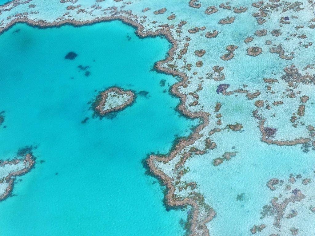 Cairns en het Great Barrier Reef | Rama Tours