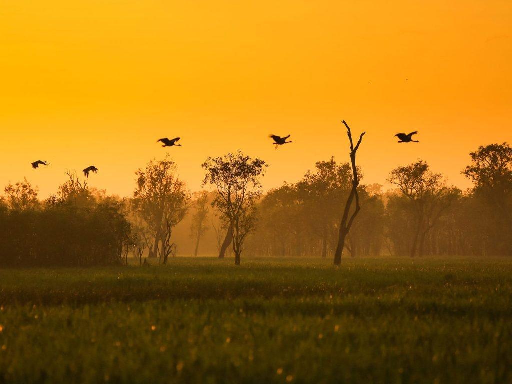 Darwin en Kakadu National Park | Rama Tours