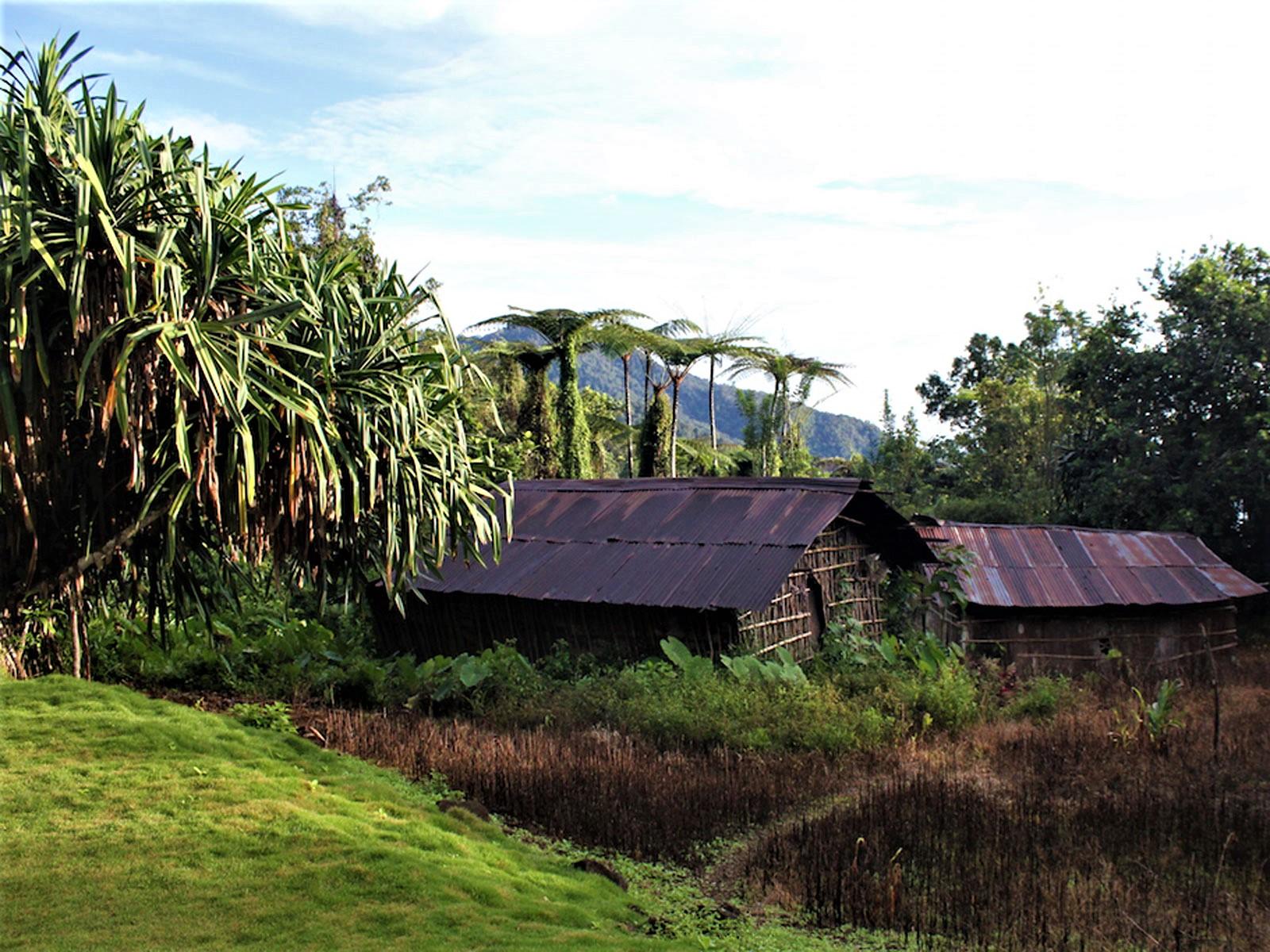 rondreis papua manokwari hoogtepunt 31
