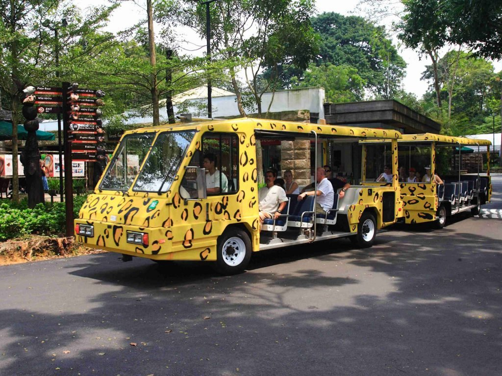 Singapore Zoo   Rama Tours