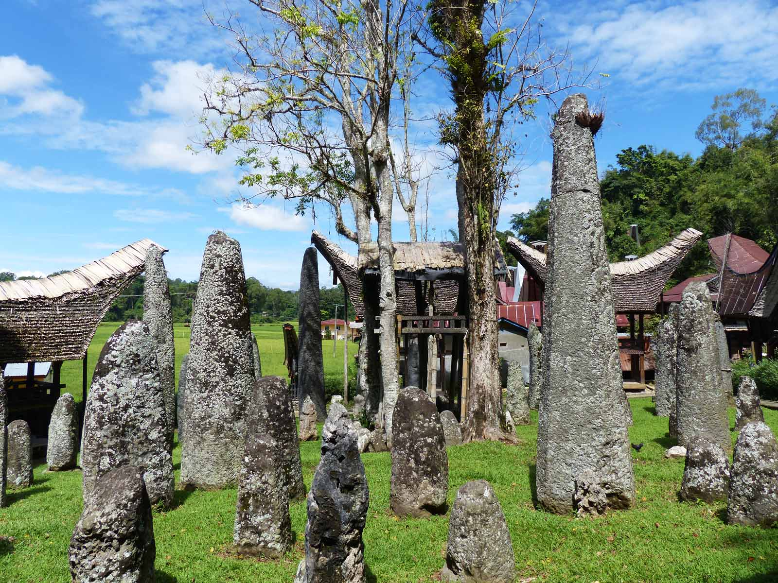 rondreis indonesie sulawesi tana toraja 28