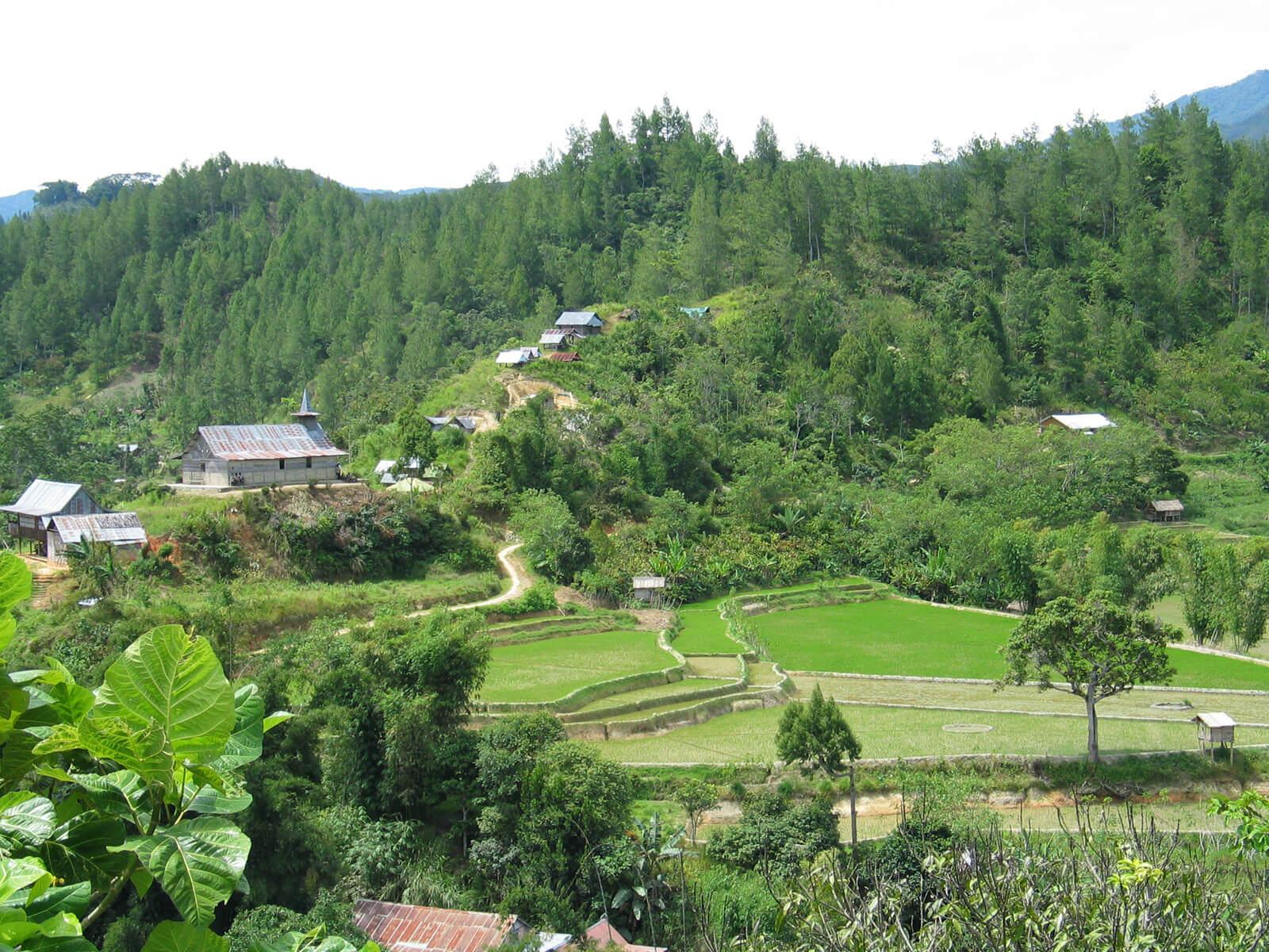 rondreis sulawesi mamasa hoogtepunt 4