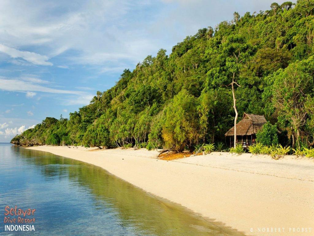 Selayar, Selayar Dive resort | Rama Tours
