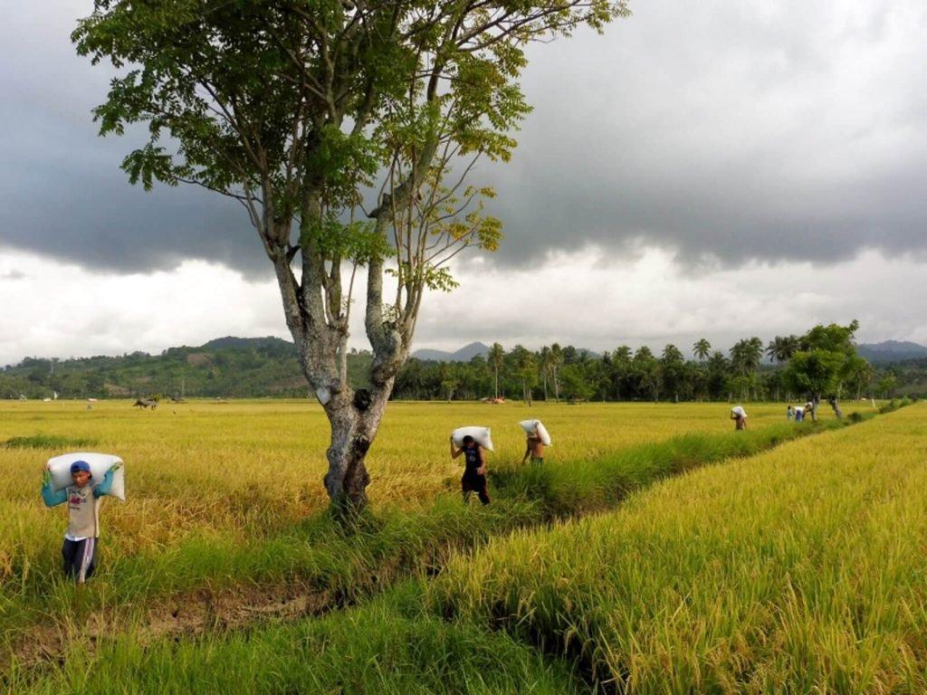 Gorontalo | Rama Tours