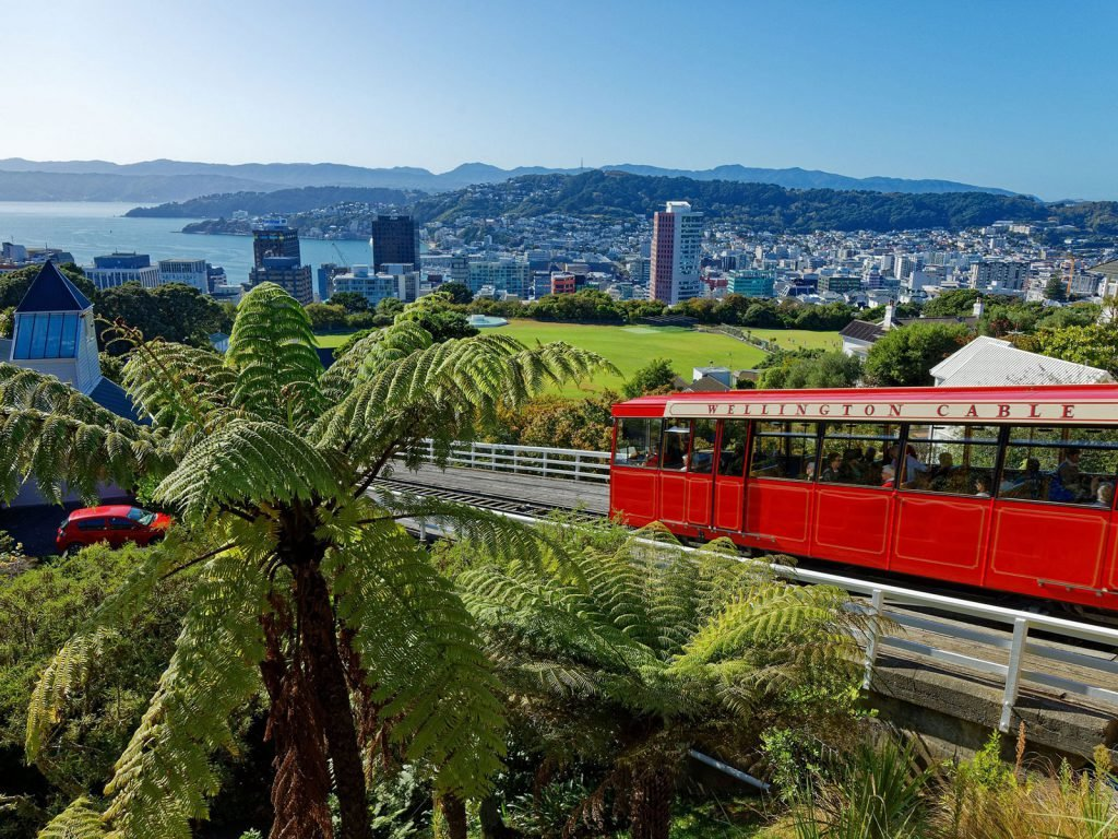 Wellington | Rama Tours