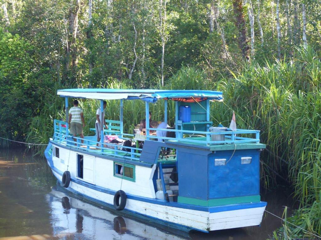 Tanjung Puting, Klotok houseboat | Rama Tours