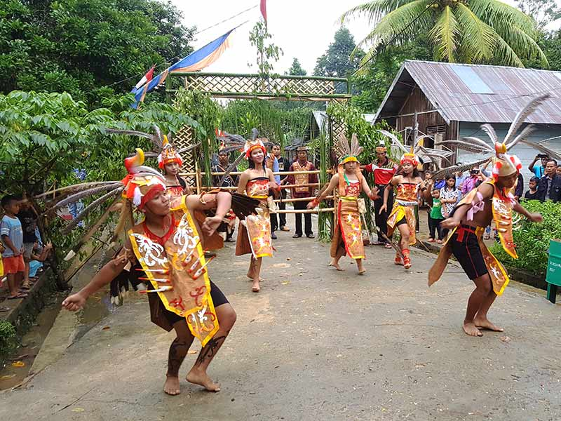 dayaks traditionele dans rondreis kalimantan