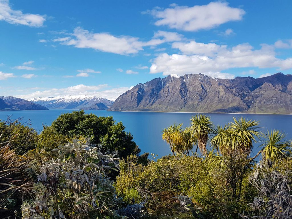 reisspecialist djordy smits favoriete foto lake hawea nieuw zeeland