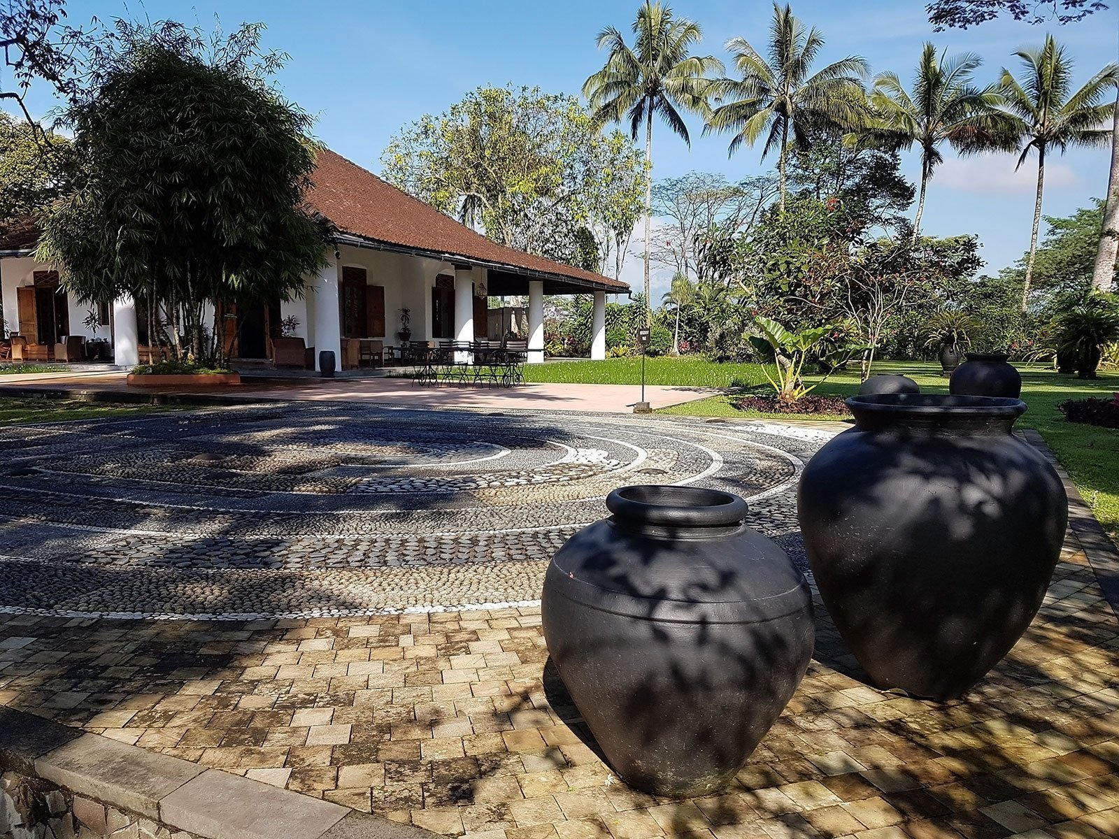 reisspecialist djordy smits favoriete hotel mesa stila resort