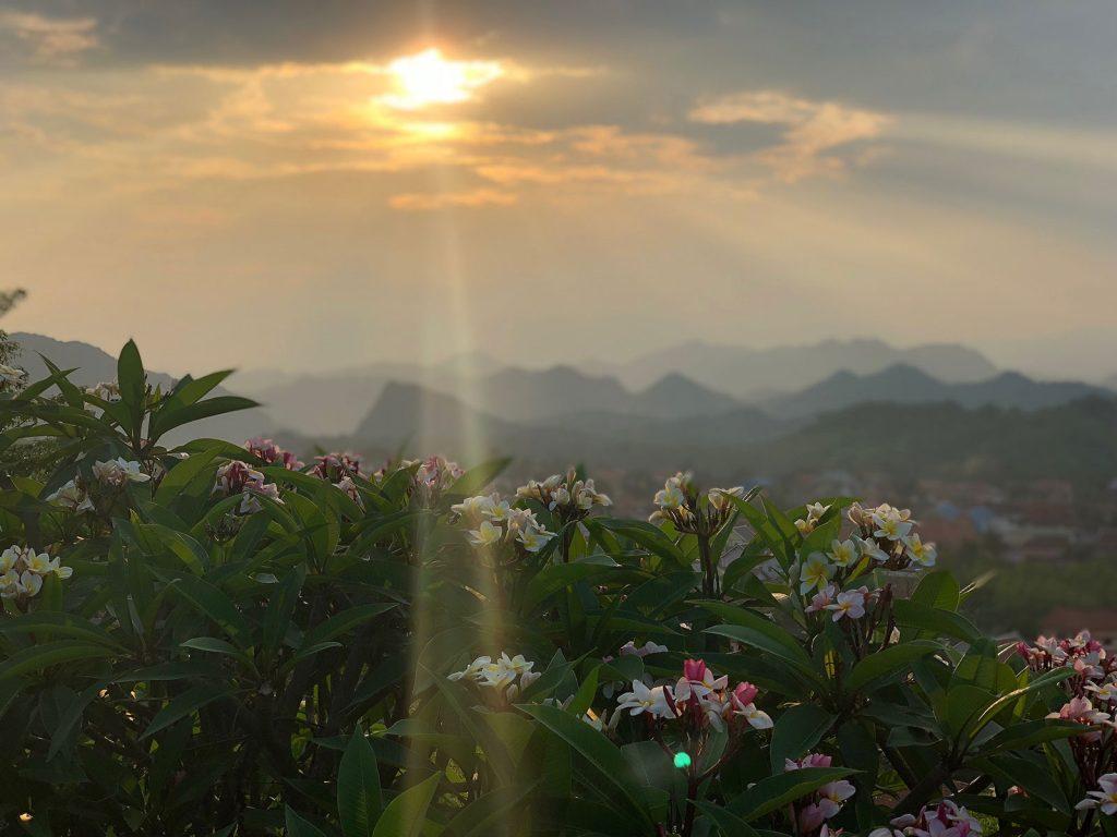reisspecialist shilla verburgt favoriete fotos bali