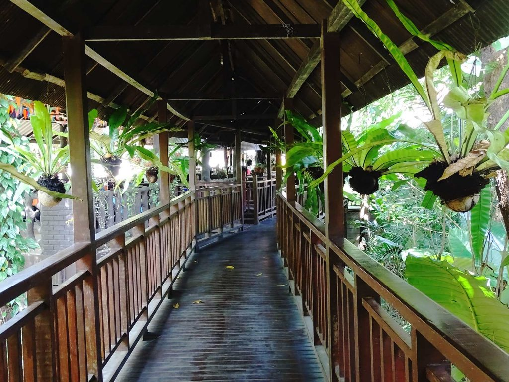 Khao Sok river lodge | Rama Tours