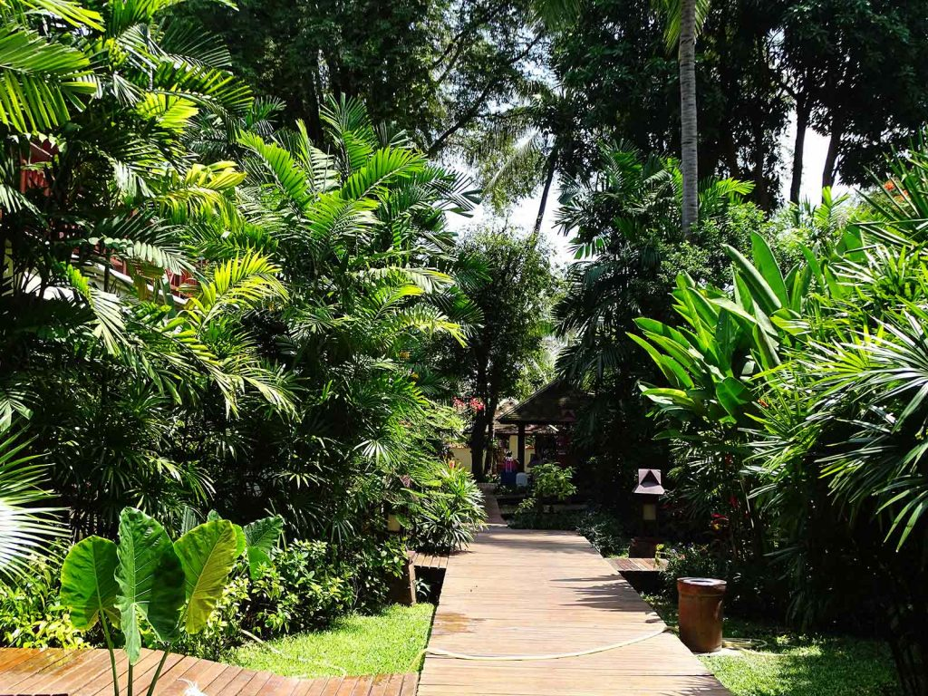 Koh Samui, Chaweng Regent resort | Rama Tours