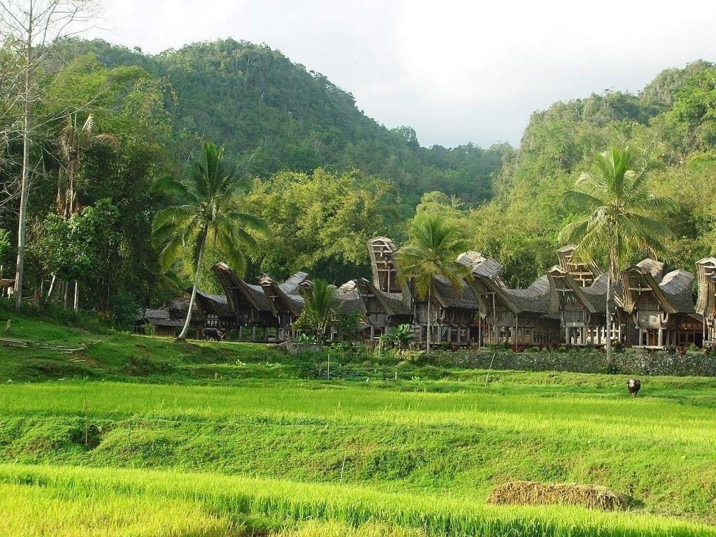 rondreis indonesie verassend sumatra en sulawesi header