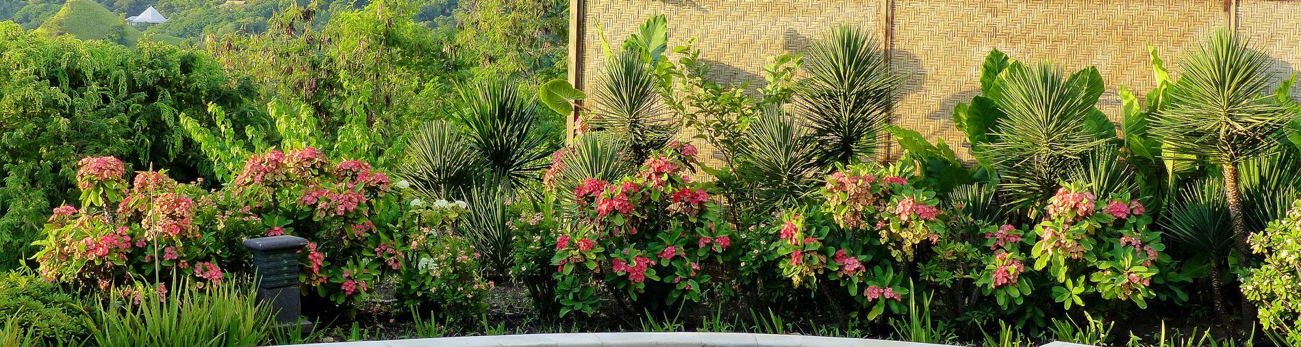 rondreis flores kleine sunda eilanden hotels