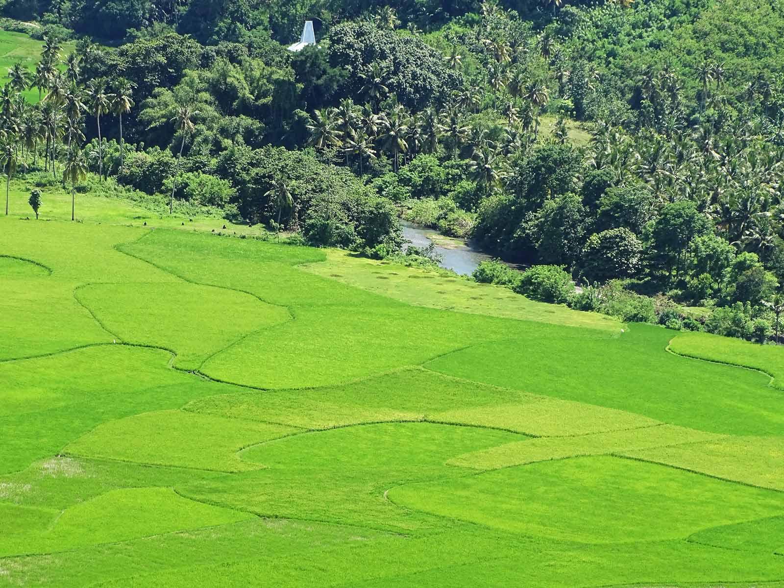 rondreis sumba lamboya district liling 10