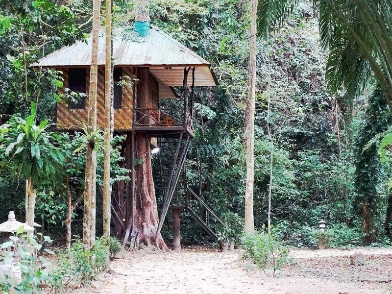 khao sok national park khao sok nature resort