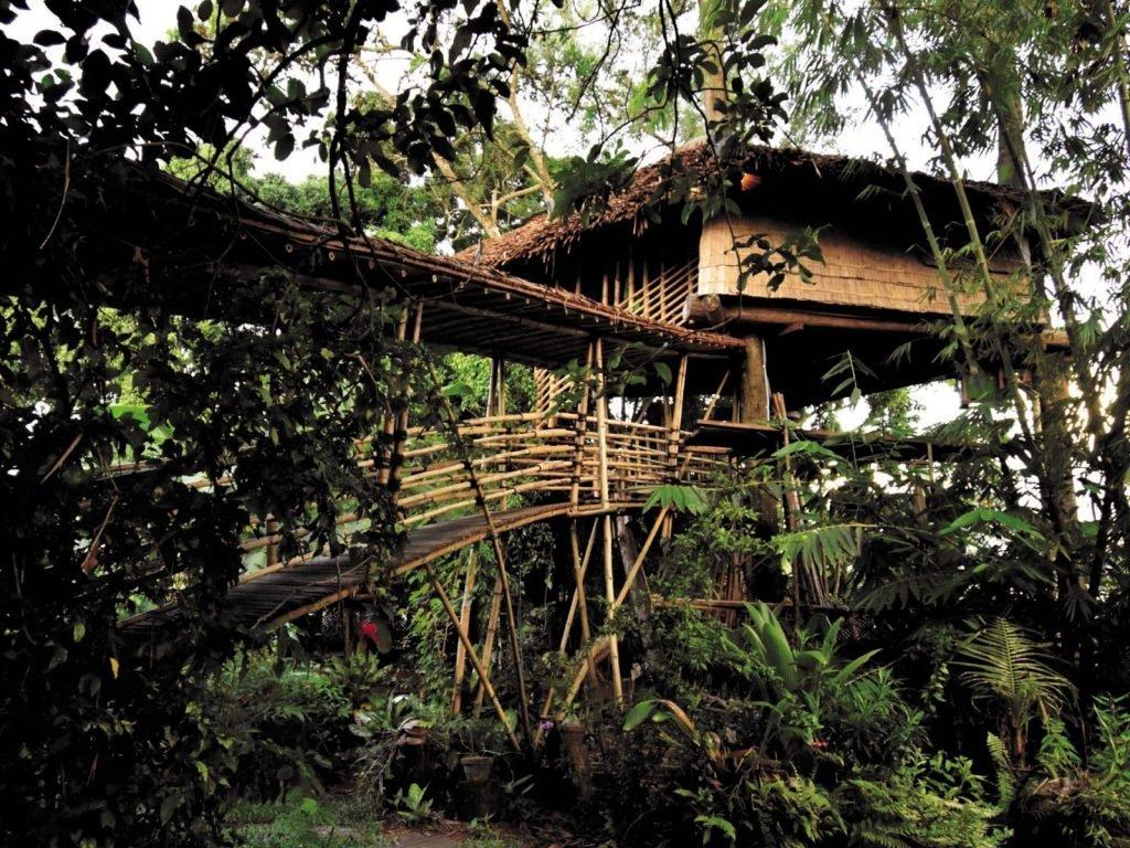 Palangkaraya, Bukit Raya Guesthouse | Rama Tours