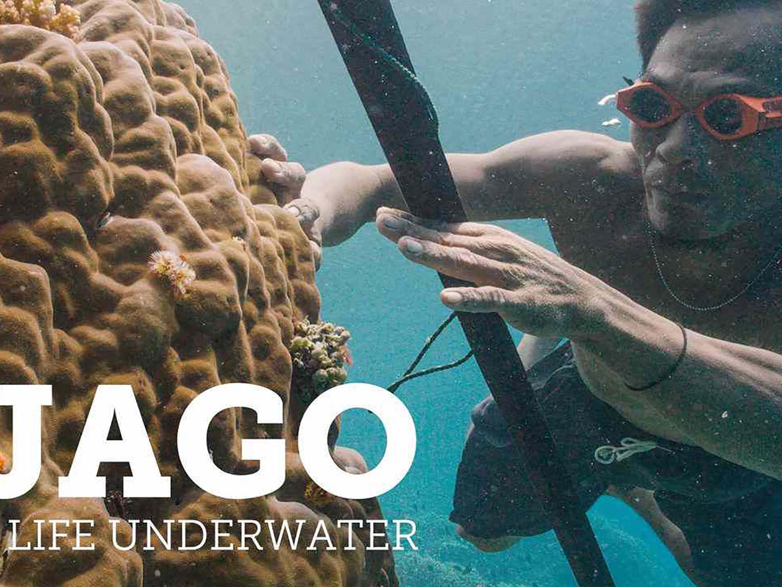 blog boeken- en filmtips indonesie jago 1