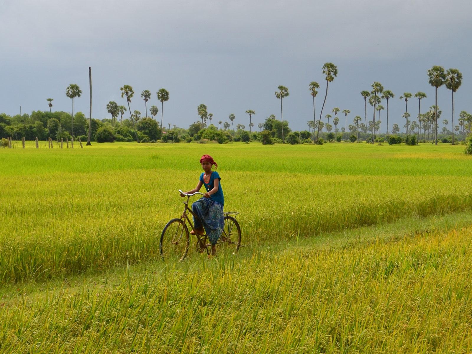 rondreis cambodja siem reap fietsen hoogtepunt