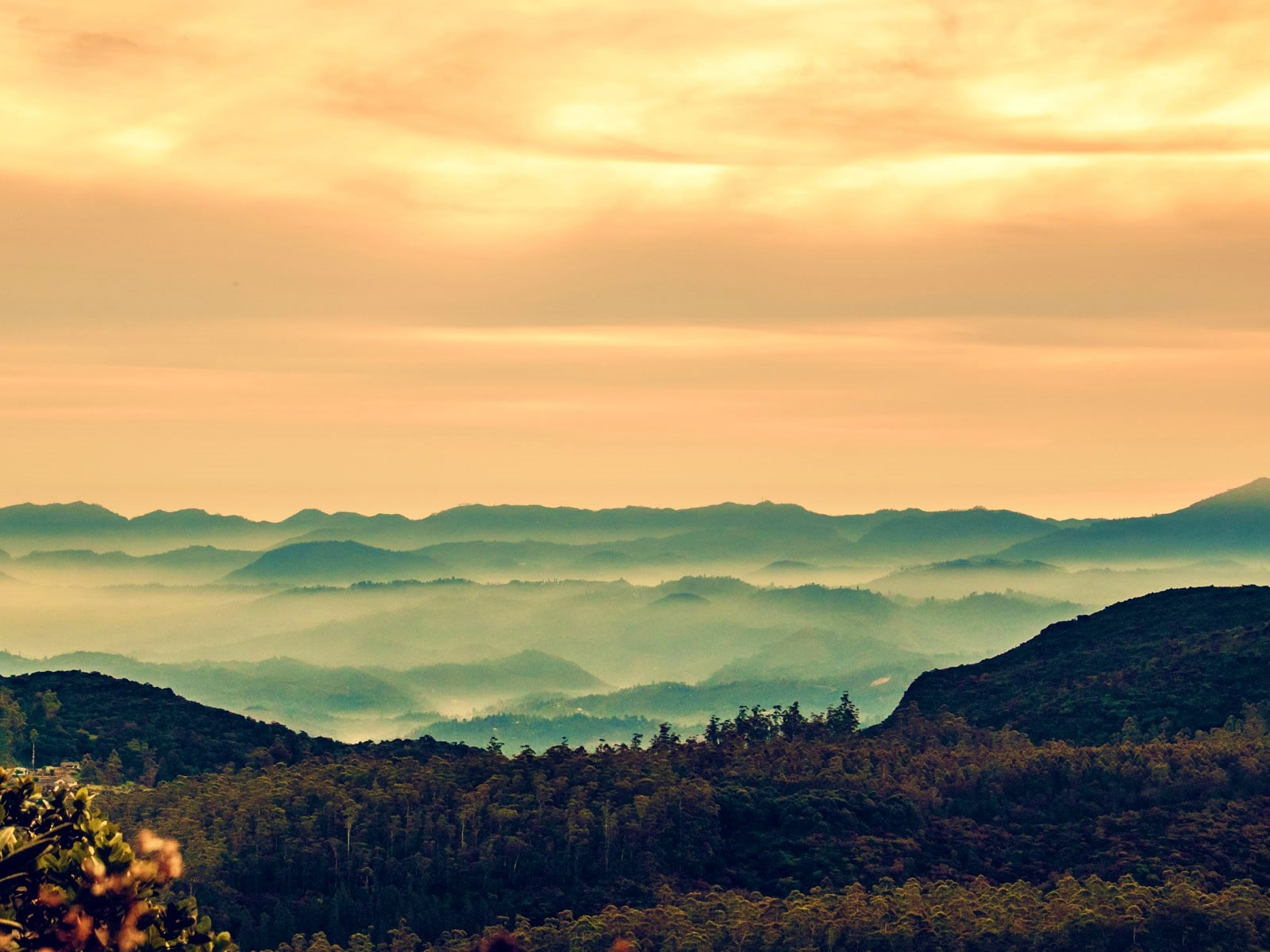 rondreis sri lanka centrale hooglanden blog