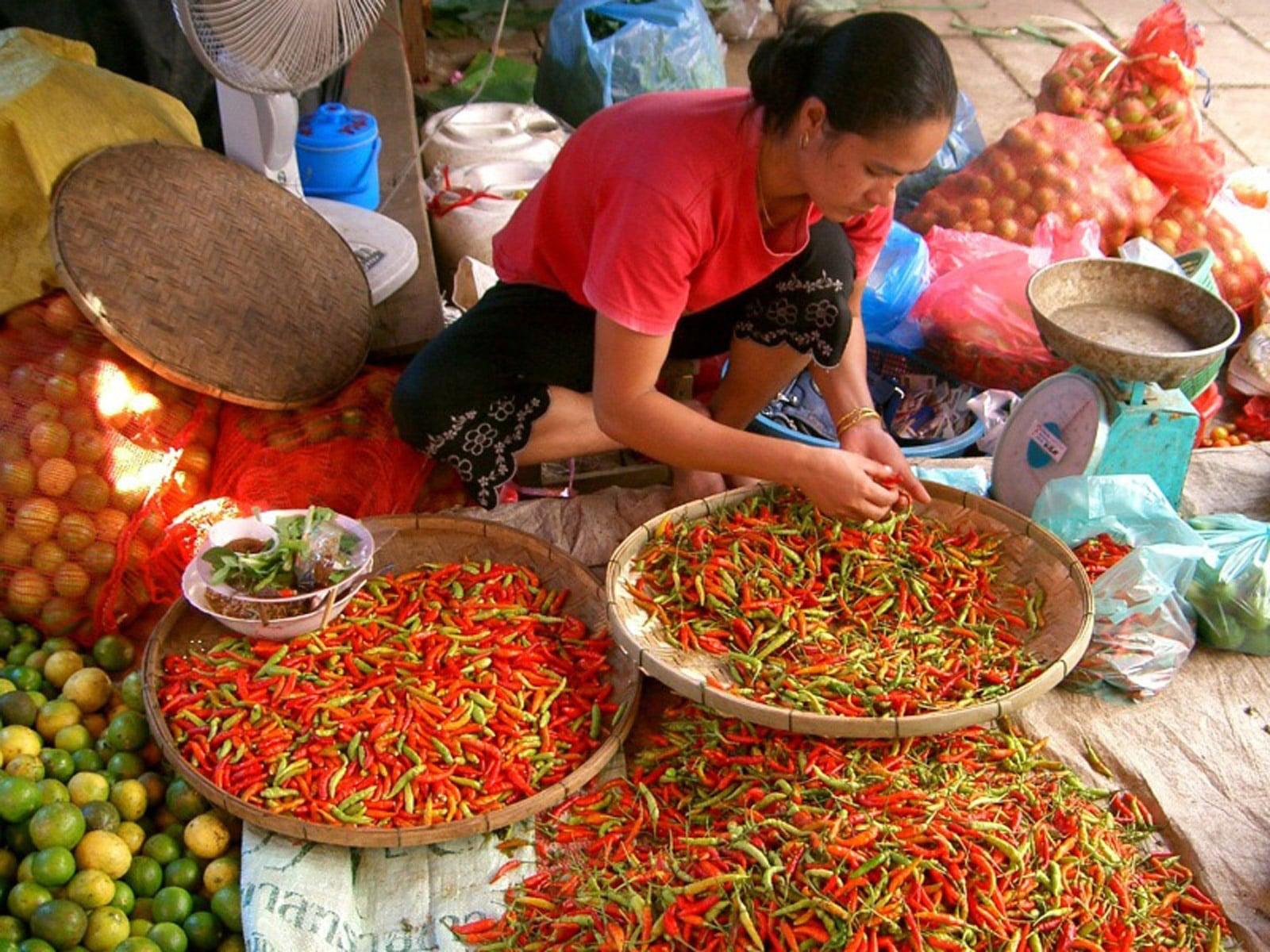 rondreis laos vientiane hoogtepunt 7