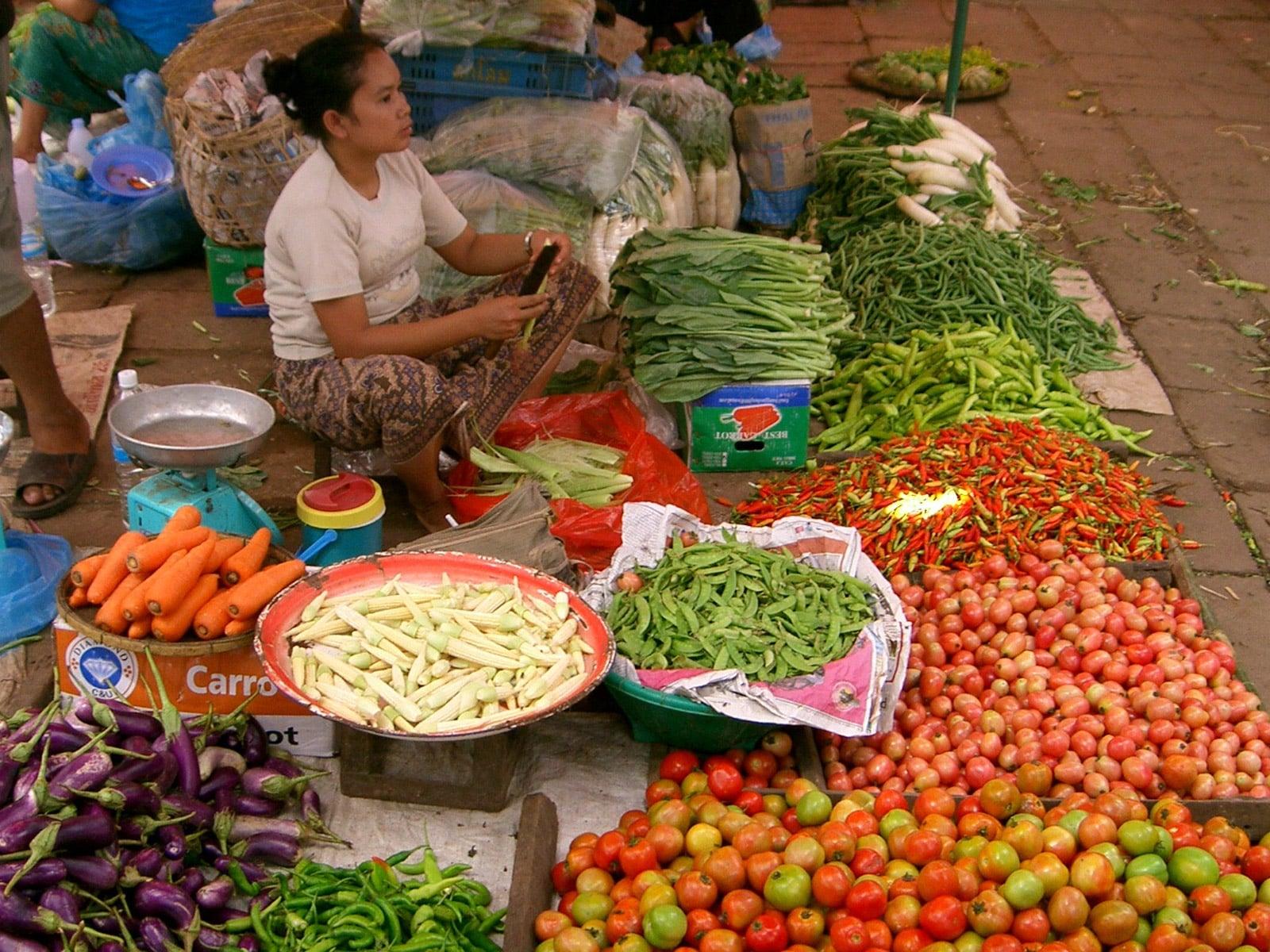 rondreis laos vientiane hoogtepunt 9