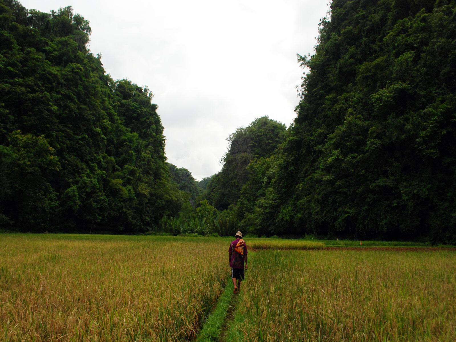 rondreis sulawesi rammang rammang blog 2