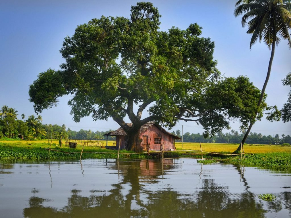 Backwaters van Kerala | Rama Tours
