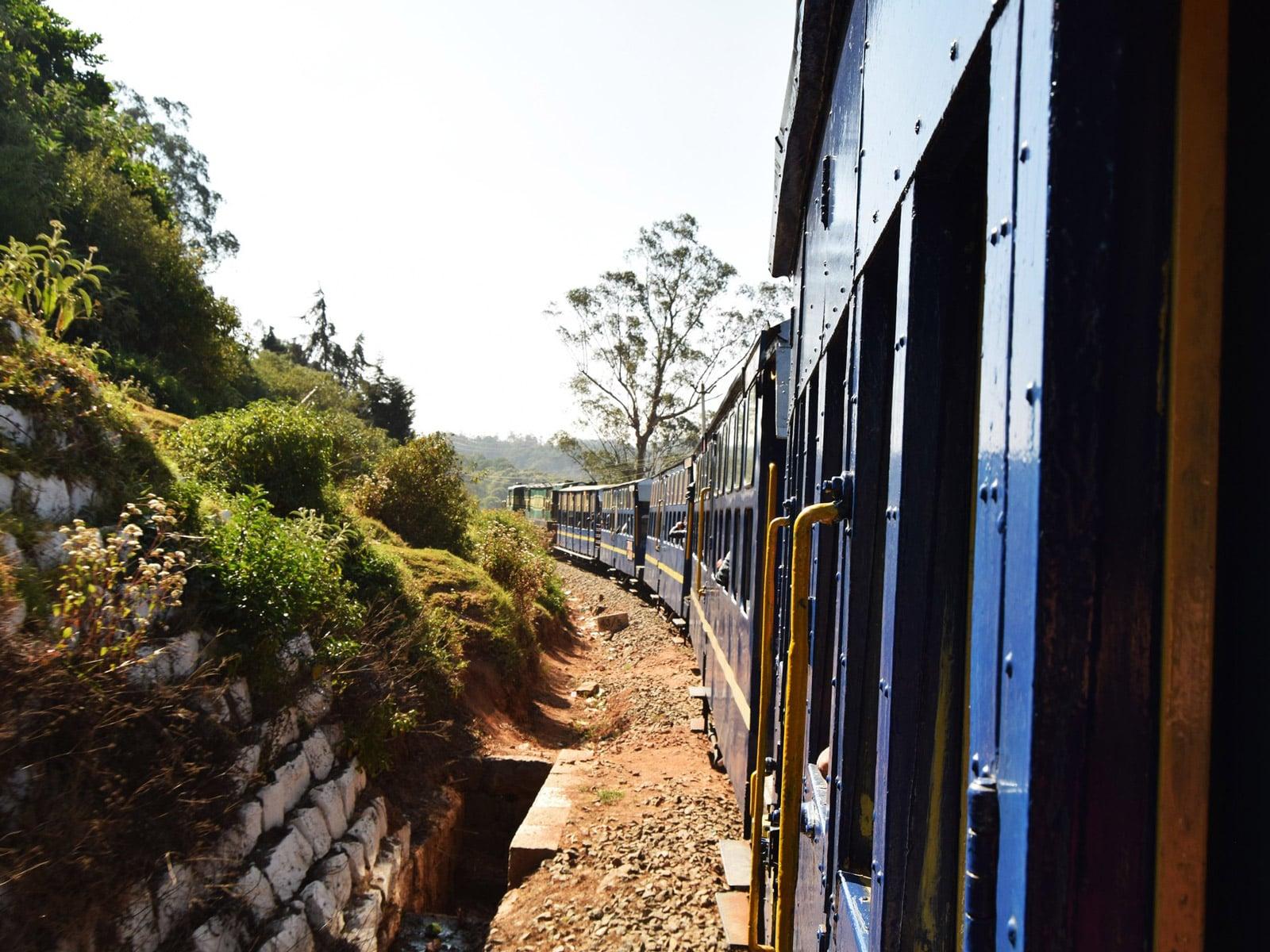 rondreis india ooty hoogtepunt 10