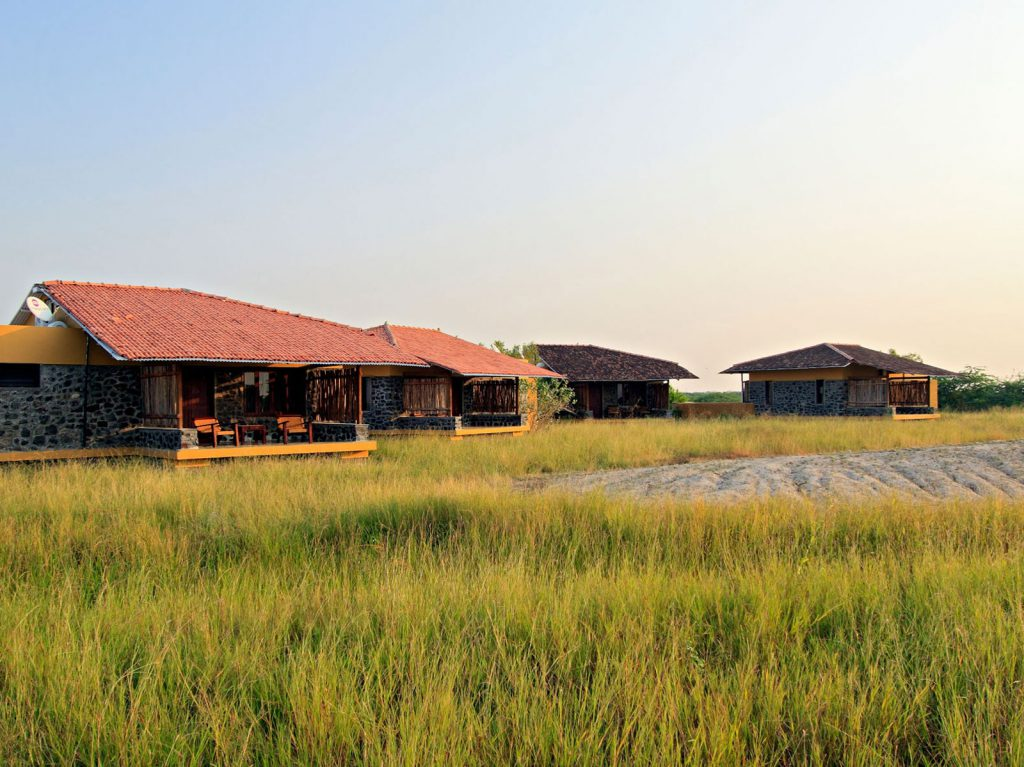 Velavadar, The Blackbuck Lodge | Rama Tours